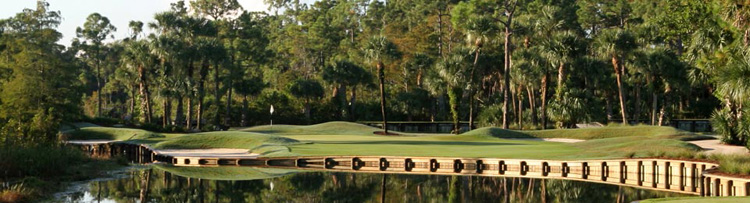 Old Marsh Golf Club Homes For Sale In Palm Beach Gardens